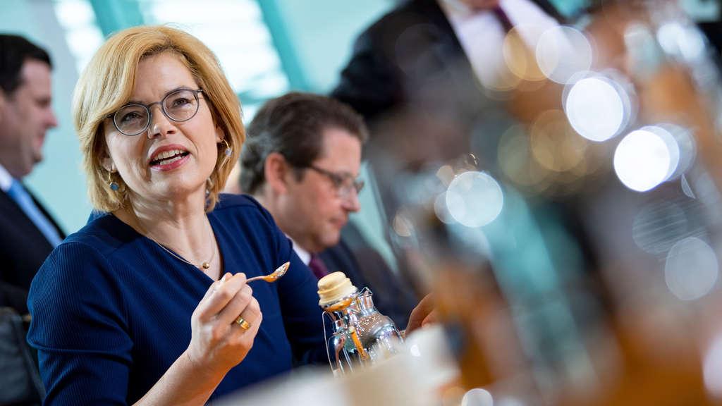 https://www.fr.de/politik/umstrittenes-nestle-video-julia-kloeckner-bekommt-rueckendeckung-12363610.html